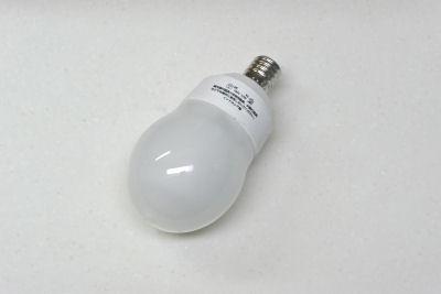 電球型蛍光灯 パルックボールスパイラル E17