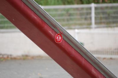 D40 SIGMA APO 70-300mm テレ端