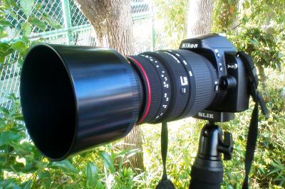 D40 SIGMA APO 70-300mm F4-5.6 DG MACRO